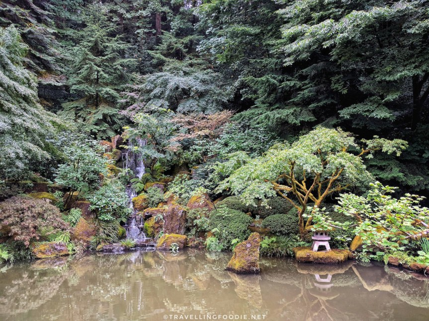 3 Must-See Beautiful Gardens in Portland,Oregon