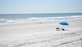 A Day Trip in Jacksonville, Florida: 7 Things To Do and Eat